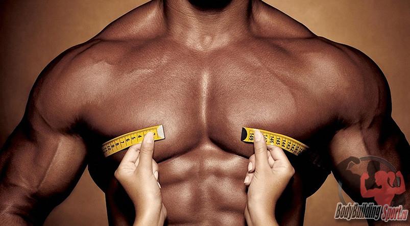 7 советов, как накачать низ грудных