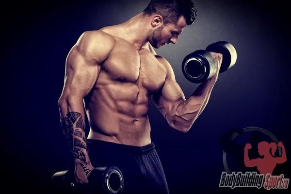 Бицепс: упражнения и правила набора массы